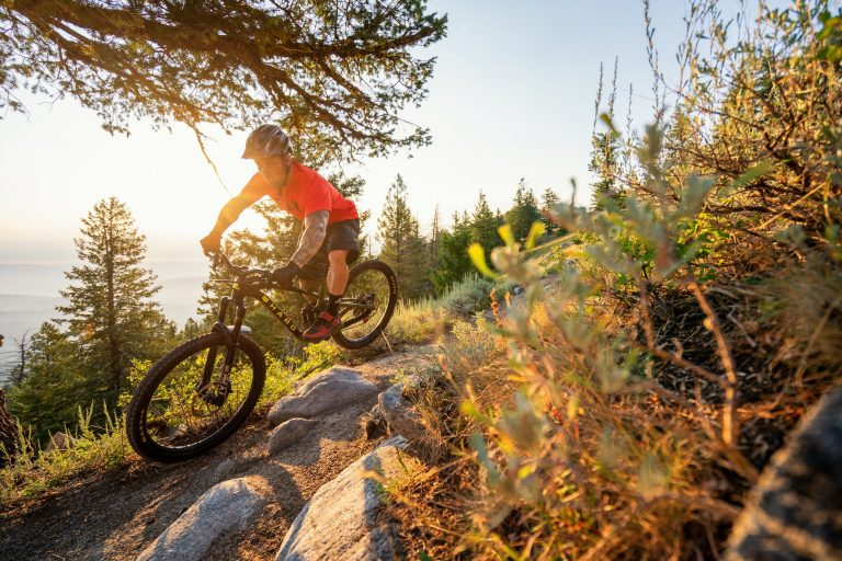 What Is the Most Expensive BMX Bike? (The Brands That Create Expensive BMX Bikes)