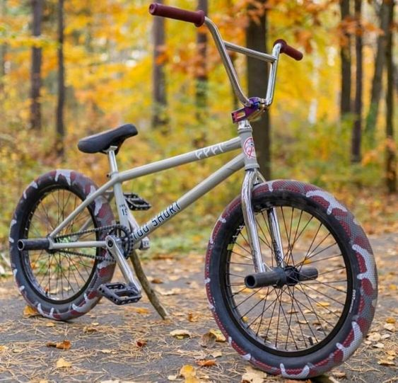 What Are the Best BMX Bikes Under $300? (What to Expect Within This Price Range)